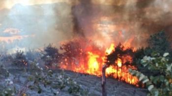 حريق كويوبيلي