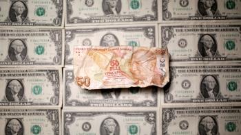 الدولار والليرة التركية اليوم
