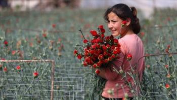بائعو الورود في تركيا