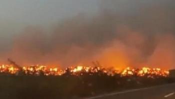 حريق مزارع الذرة