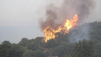 حريق مانيسا
