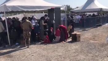 مواطنين أتراك