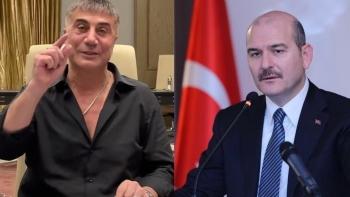 زعيم المافيا التركية وصويلو