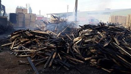 حريق هائل بمصنع أخشاب تركي بمقاطعة تشاي