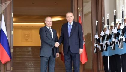أردوغان يغيب عن أسبوع الطاقة الروسي