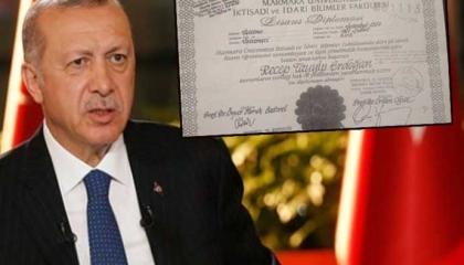 أتراك يدعون للتظاهر أمام محكمة حقوق الإنسان الأوروبية ضد «أردوغان المزور»