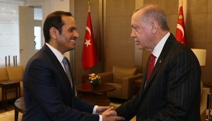فيديوجراف.. قطر تجدد ولاءها لأردوغان