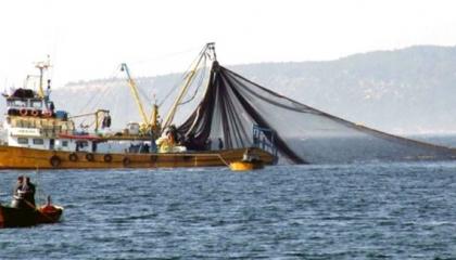 ارتفاع أسعار الأسماك في تركيا بسبب سوء الأحوال الجوية بالبحر الأسود