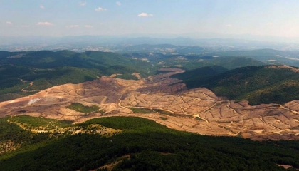 التنقيب عن الذهب وراء قطع 347 ألف شجرة من جبال إيدا