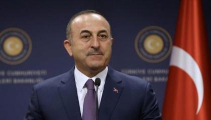 نائب تركي: وزير خارجية أردوغان «سمسار» لجماعات ضغط في أوروبا