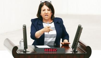نائبة معارضة: «حزب أردوغان» أكبر عدو للأكراد.. ويتسلل للسلطة مثل «اللصوص»