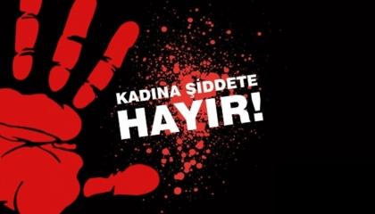 بمعدل ضحية يوميًا.. العنف في تركيا يتسبب في مقتل 302 تركية خلال 11 شهرًا