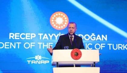 بالفيديو.. أردوغان يتوسل لقادة  «شرق المتوسط» للتصالح معه في قضية الغاز