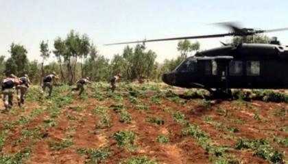 القبض على ضابط شرطة تركي أثناء تهريبه 120 كيلو من مخدر الحشيش