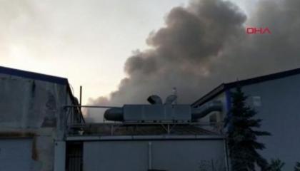 حريق يأتي على مصنع بندق في مدينة أوردو التركية