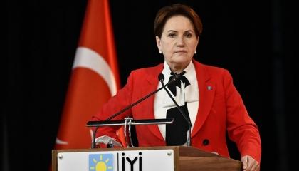 المرأة الحديدية: 64 % من المواطنين يريدون العودة إلى النظام البرلماني