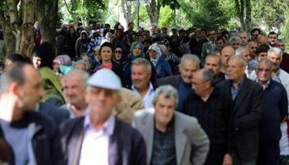 بلغ 95 ألف.. زيادة أعداد المتقاعدين  العاملين في تركيا