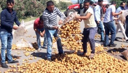 بالفيديو..نائب تركي: 80 % من المزارعين يعيشون كـ«العبيد» تحت حكم أردوغان
