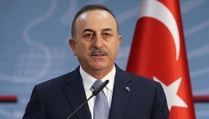 وزير خارجية أردوغان يغازل قادة أوروبا: بيدكم ترياق سمّ العنصرية