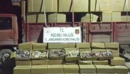 قوات الدرك التركية تضبط 5 أطنان من التبغ المهرب