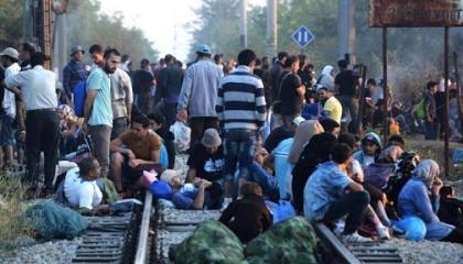 اعتقال صحفيين تركيين خلال تغطية عبور المهاجرين إلى أوروبا