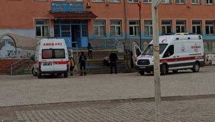 تسمم 36 تلميذًا تركيًا في مدرسة ابتدائية وإعدادية بوجبات فاسدة