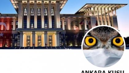 اعتقال مدون شهير على «تويتر» كشف عن سطو ابني أردوغان على 8 ملاين ليرة