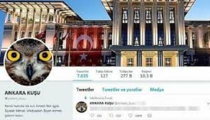 «طائر أنقرة» مهدد بالسجن 7 سنوات بعد كشفه فساد عائلة أردوغان