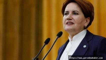 المرأة الحديدية: عرش أردوغان يهتز وسيرحل قريبًا
