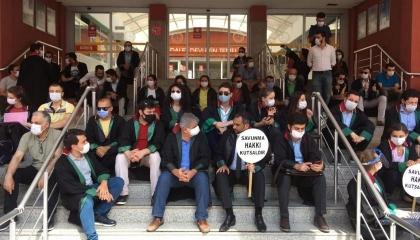 نقابات المحامين بمحافظات كوجه علي وعلي أغا تنضم لـ«مسيرات الدفاع»