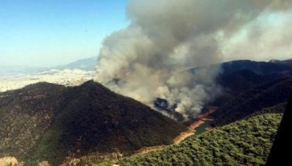 بالفيديو.. اندلاع حرائق هائلة في غابات محافظة إزمير التركية