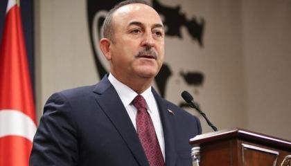 وزير الخارجية التركي: عملية إيريني متطرفة.. وعلى ألمانيا أن تكون محايدة