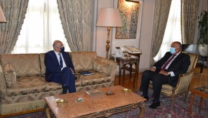 وزير الخارجية المصري يستقبل نظيره اليوناني تمهيدًا لتوقيع ترسيم حدود