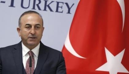 وزير الخارجية التركي يرد على هجوم رئيس الوزراء النمساوي: تكرهون الإسلام