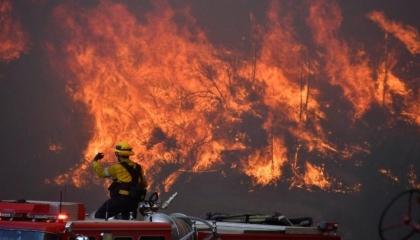 الحرائق تلتهم غابات موغلا بعد اندلاع النيران في حقل زيتون بخليج أكبوك
