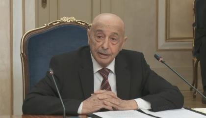 عقيلة صالح: إعلان القاهرة هو الأقرب لحل أزمة ليبيا.. ومهمتنا طرد المرتزقة
