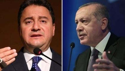 زعيم «ديفا»: حكومة أردوغان تتسول من الخارج بعد فشلها في إنقاذ الاقتصاد