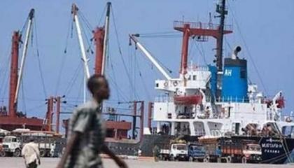 فيديوجراف.. تركيا تواصل نهب ثروات الصومال