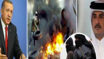 عضوة بـ«الشيوخ الفرنسي»: قطر وتركيا تبثان الكراهية.. وأطالب بحظر أبواقهما