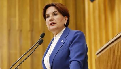 بالفيديو.. المرأة الحديدية: نظام أردوغان لا يعتمد على العقل مطلقًا