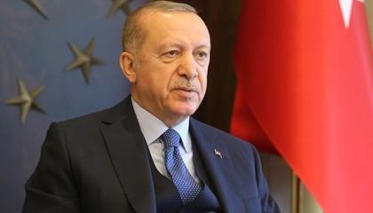 أردوغان يجري اتصالًا هاتفيًا بالرئيس الدومينيكي لبحث تعزيز التبادل التجاري