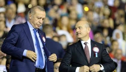 بعد اتهامه بتهريب المخدرات.. هل يتخلى أردوغان عن وزير داخليته؟