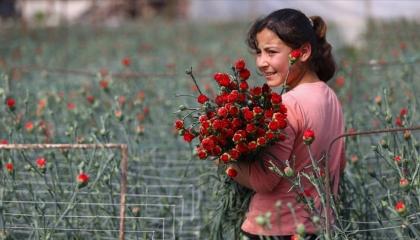 «عيد حب» حزين في تركيا.. مبيعات الورد تنخفض بنسبة 50 % هذا العام