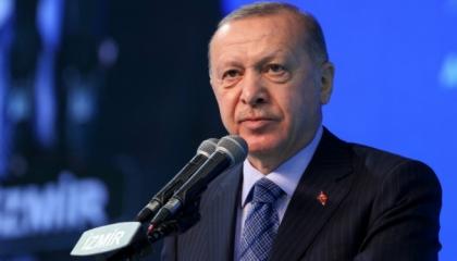 أردوغان: حملة «الشعب» ضد بيرات البيرق إهانةٌ لأسرتي ولي شخصيًا
