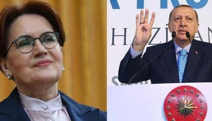 أكشنار لأردوغان: خسرنا كثيرًا بسبب عدائك لمصر.. والآن تتخلى عن «رابعة»!