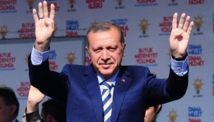 «مصر ثابتة وتركيا تتلاعب».. اعترافات سفراء أنقرة لدى القاهرة