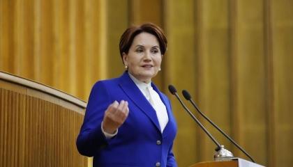 المرأة الحديدية تطالب مجلس الدولة بالعودة لاتفاقية إسطنبول