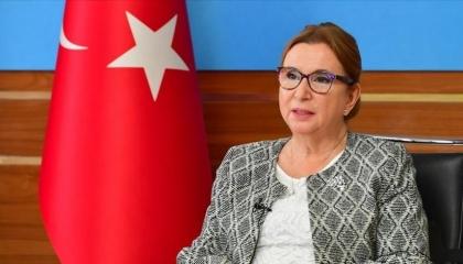 تركيا وأذربيجان توقعان مذكرة تفاهم في مجال التجارة الإلكترونية