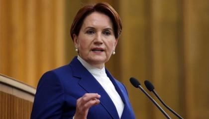 المرأة الحديدية: أردوغان مجنون سلطة ويعجز عن مناهضة قاعدة إنجرليك الأمريكية