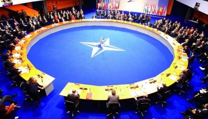 خبير تركي يطالب بلاده بالانسحاب من حلف الناتو